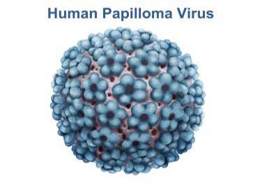 بیماری Hpv چیست